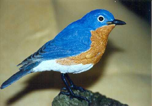 Sve vrste Ptica - Page 2 Blue%20bird2